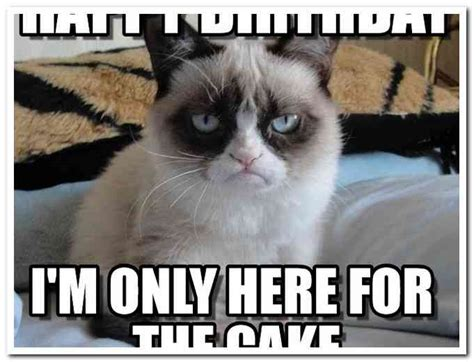 Grumpy Cat Happy Birthday Meme - happy birthday grumpy cat meme rusmart org