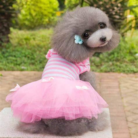 princess puppy pet puppy princess costume apparel clothes cat bow tutu dress lace skirt ebay