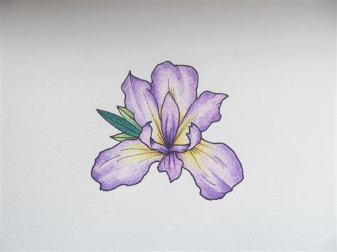 iris flower tattoo designs iris search characte
