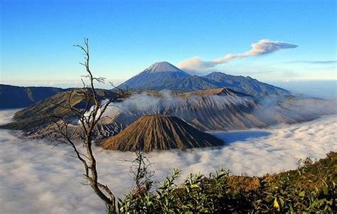 Rakyat Jawa Timur Jawa Gunung Bromo bromo malang tour maheswara tour and travel