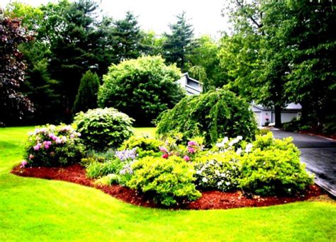 Landscape Design Using A Picture Of My House Fabulous Simple Landscaping Ideas Using Mulch Tropical