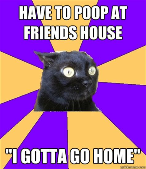 Anxiety Cat Meme Generator - anxiety cat meme weknowmemes