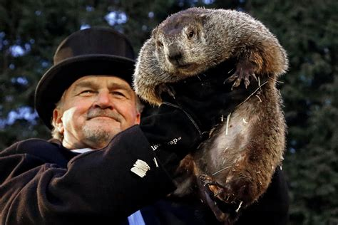 groundhog day pa groundhog day s history how punxsutawney phil became an