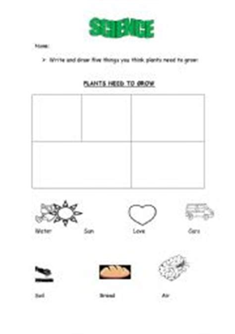 what do plants need to grow worksheet teaching worksheets plants