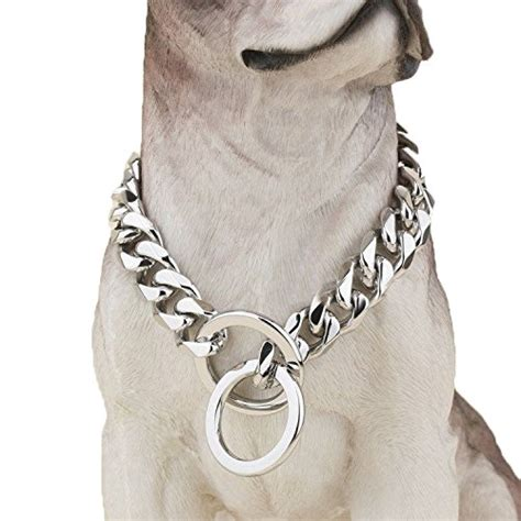pitbull collars 5 best pitbull collars for bullies mastiffs large dogs