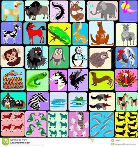 animal alphabet u stock photo image 8440040 animals of the alphabet stock image image 22819511
