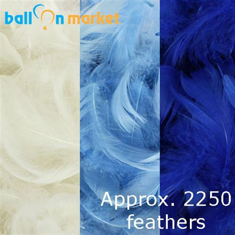 feather boy blue peter 0007120265 boy feather pack 3 colours approx 2250
