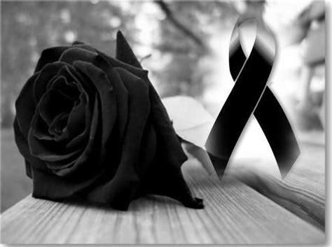 imagenes de rosas luto de juarez 25 melhores ideias sobre rosas negras de luto no