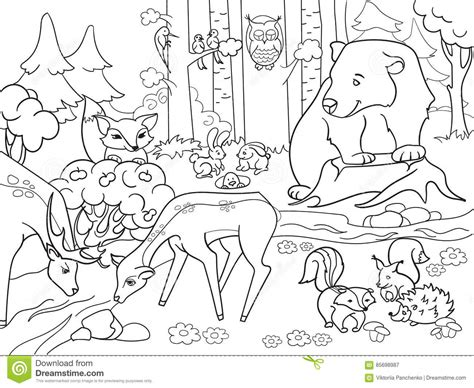 jungle landscape coloring pages 34 coloring pages of animals in the rainforest