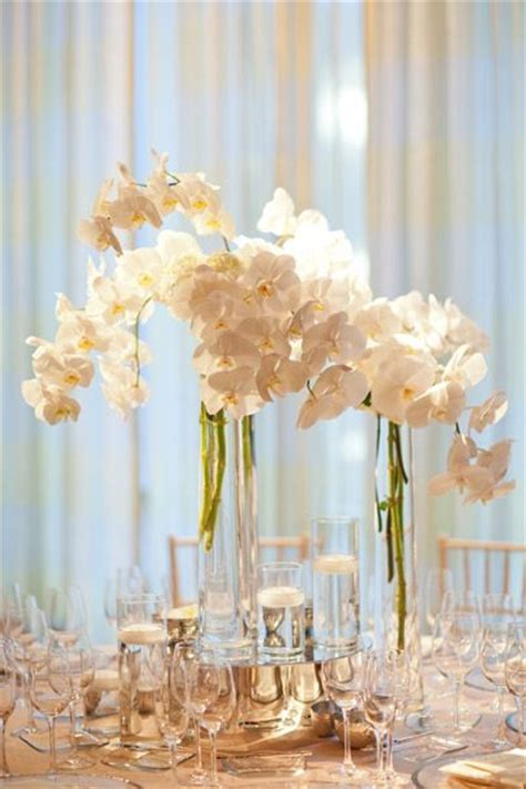 Phalaenopsis Orchid Centerpiece Planning Our 7 Best Images About Phalaenopsis Orchids Arrangements On