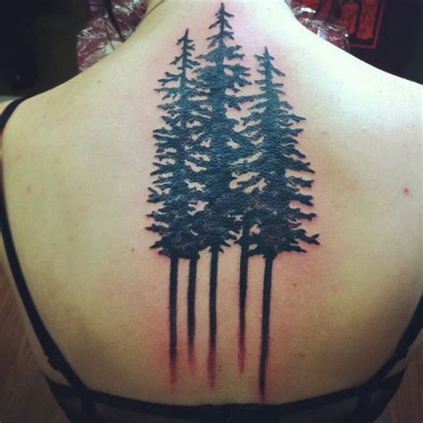evergreen tree tattoo pine trees ideas