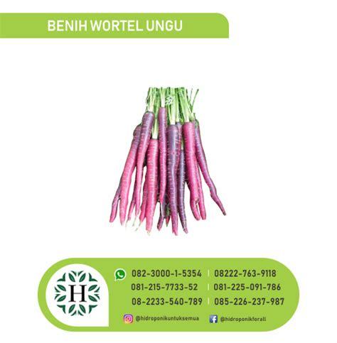 Benih Wortel Ungu benih sayuran jual alat bahan media hidroponik