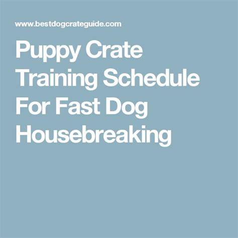 puppy crate schedule 17 best ideas about puppy schedule on puppy schedule a