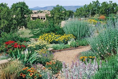 a colorful xeriscape garden design by susan blake of santa fe new mexico features many