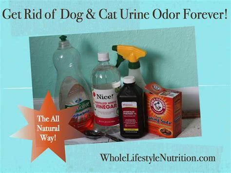 rid  dog  cat urine odors   natural