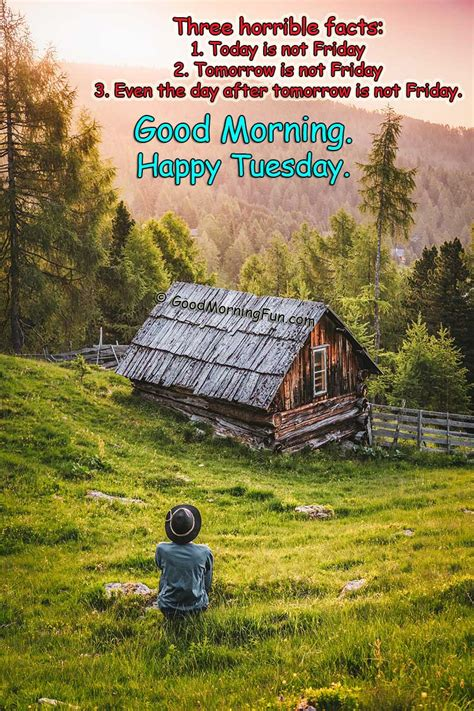 top  good morning happy tuesday quotes  images