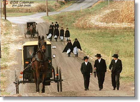 amish culture beliefs and lifestyle about travel 231 best images about nostalgia amish amish amish on
