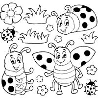 coloring pictures of butterflies and ladybugs bug 187 coloring pages 187 surfnetkids