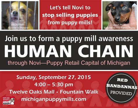 family puppy novi help take a stand against puppy mills in michigan puppy leaks