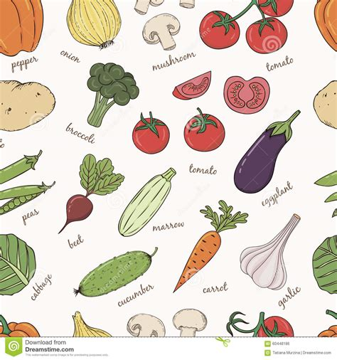d vegetables name vegetables with names seamless pattern stock vector