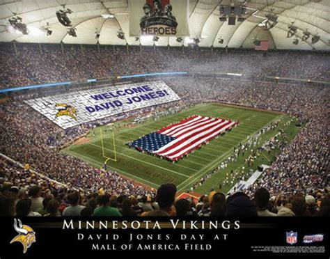 best gift for vikings fan 17 best images about personalized nfl football stadium