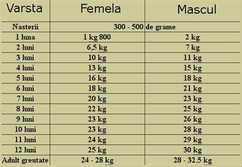 yorkie weight scale 5 best images of puppy birth weight chart dachshund puppy growth chart yorkie puppy