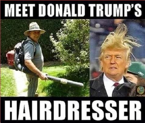 Funny Hairdresser Memes - funny pictures of the day 36 pics