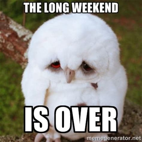 Long Weekend Meme - best 20 long weekend meme ideas on pinterest long