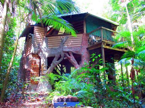 Daintree Accommodation Rainforest Treehouse Daintree House