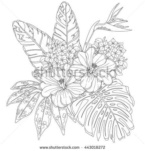 tropical leaves coloring pages tropical leaves coloring pages coloring pages