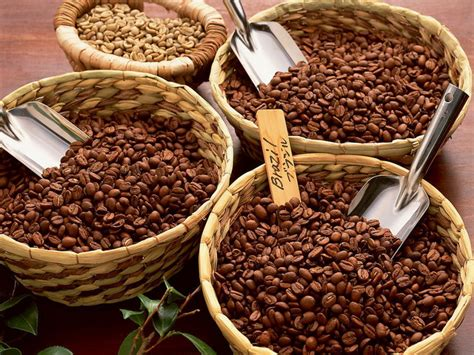 Robusta Coffee coffee beans the moon cafe