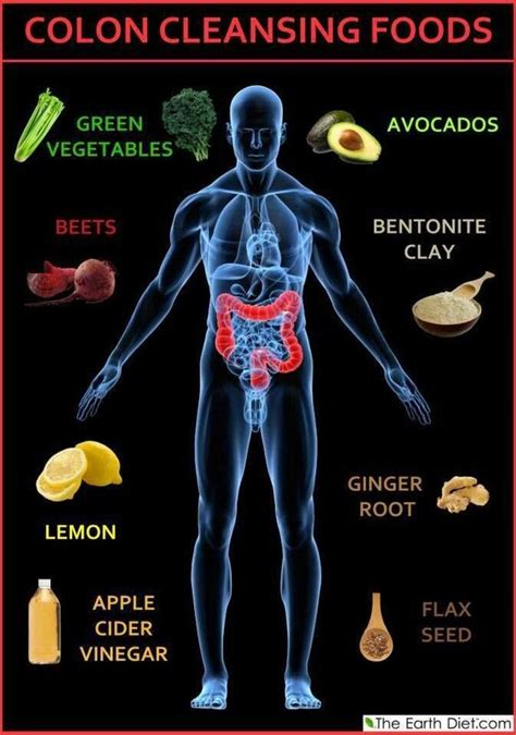 Food Diet Detox Side Effects by 47 Detox Drinks Recipes For Cleansing Weight Loss