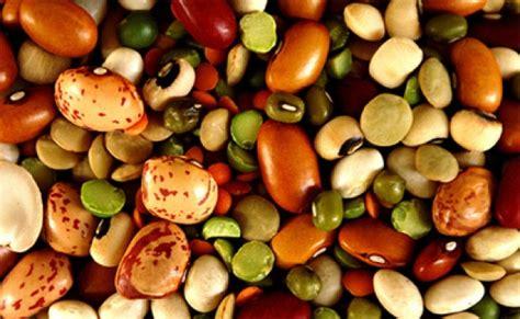 alimentazione senza proteine animali proteine vegetali ed animali importanza nell alimentazione