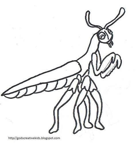 ray chill s world praying mantis coloring pages by rachel l