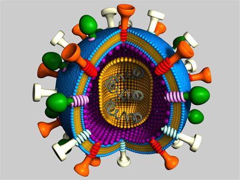 membuat model virus 3d 3d model virus receptors dna