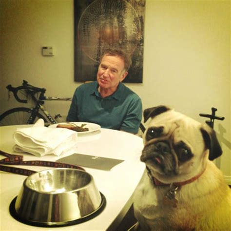robin williams pug found comfort in his pet leonard during his battle with depression ok magazine