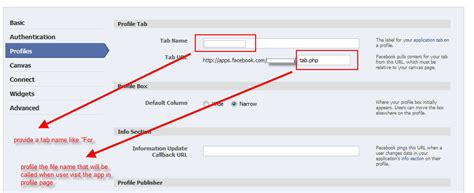 customize fan page develop customize application for fan page