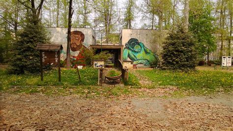 giardino zoologico torino parco michelotti da zoo a biosfera grazie a zoom