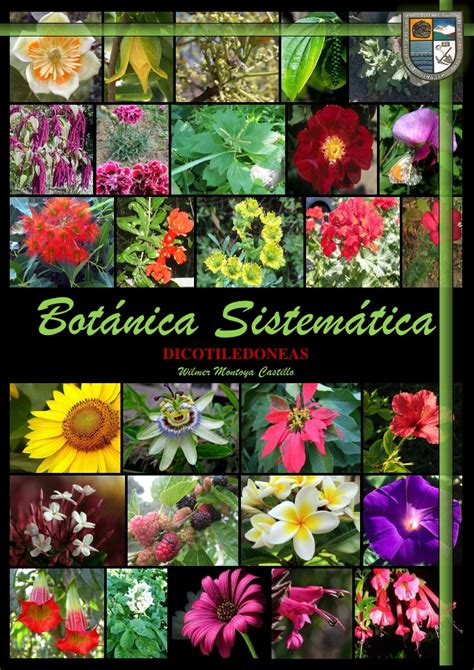 The Botanica Manual De Botanica Sistematica Ii