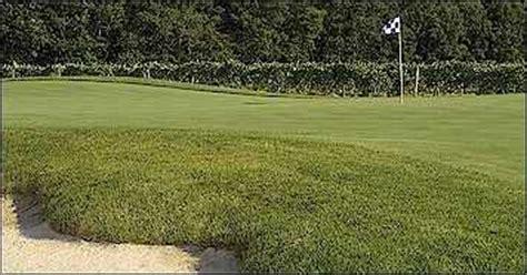 Renault Vineyard Golf by Vineyard Golf At Renault Winery In Egg Harbor Township