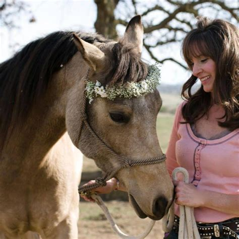 what happens when a knots you cremello stallion moonrock sporthorses cremello