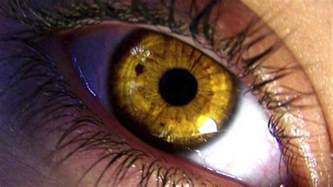 gold eye color get yellow gold in 10 seconds how to change your