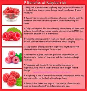 9 benefits of raspberry healthful diet and nutrition