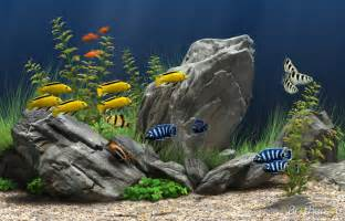 Interactive Home Decorating Tools Download Free Dream Aquarium Screensaver Dream Aquarium