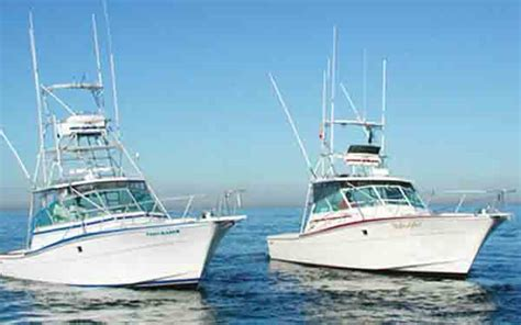 bass boat rental san diego newport landing sportfishing southern california fishing