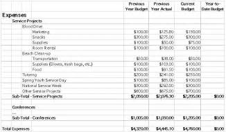 apoimpactproject chapter budget planning