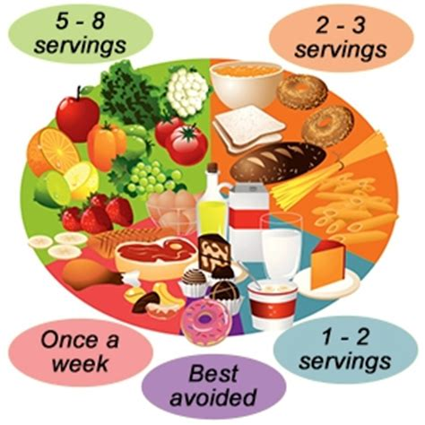 fruit n veg diet protein vegetables and fruit diet types n shapes