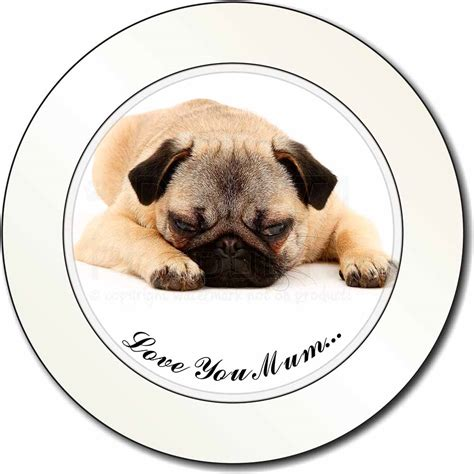 car advert with pug dogs pug you car permit holder tax disc gift id 80065