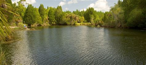 Suwannee River Cabins by Vrbo 174 Suwannee River Us Vacation Rentals Reviews Booking