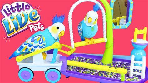 Live Pet by Live Pets Cleverkeet Bird Bird Swing Playground